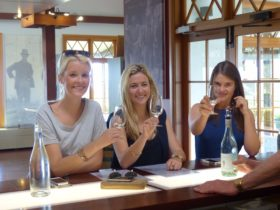 Private wine tasting at Audrey Wilkinson
