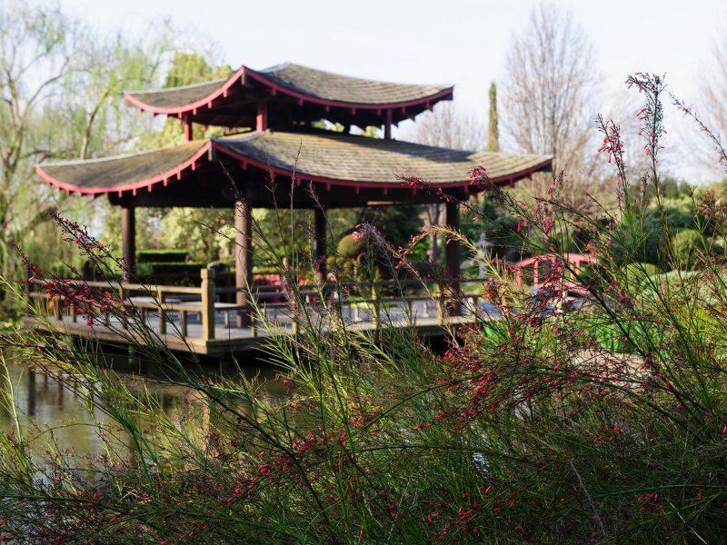 Hunter Valley Gardens Oriental Garden