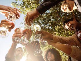 Hunter Valley Wine Festival