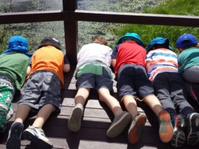 Kids at the Wetlands