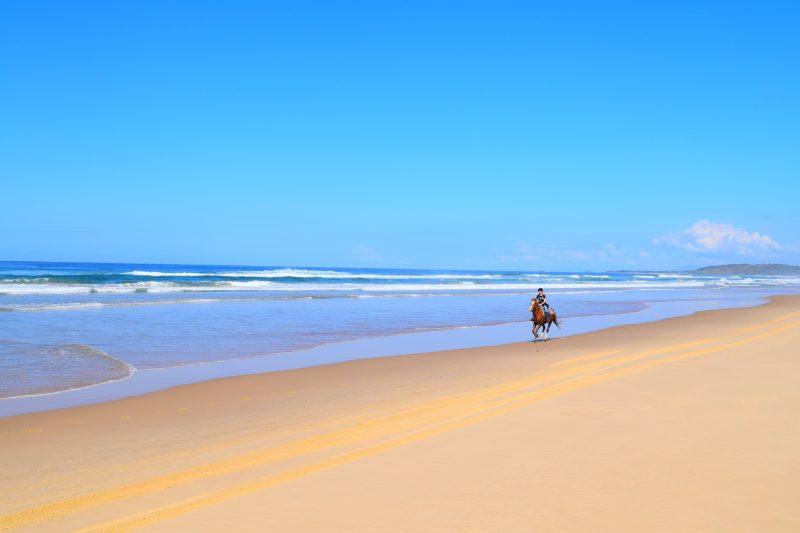 HWH Stables Beach Riding