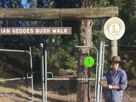 Ian Geddes Bushwalk