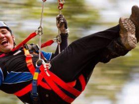 Illawarra Fly Zipline Tour