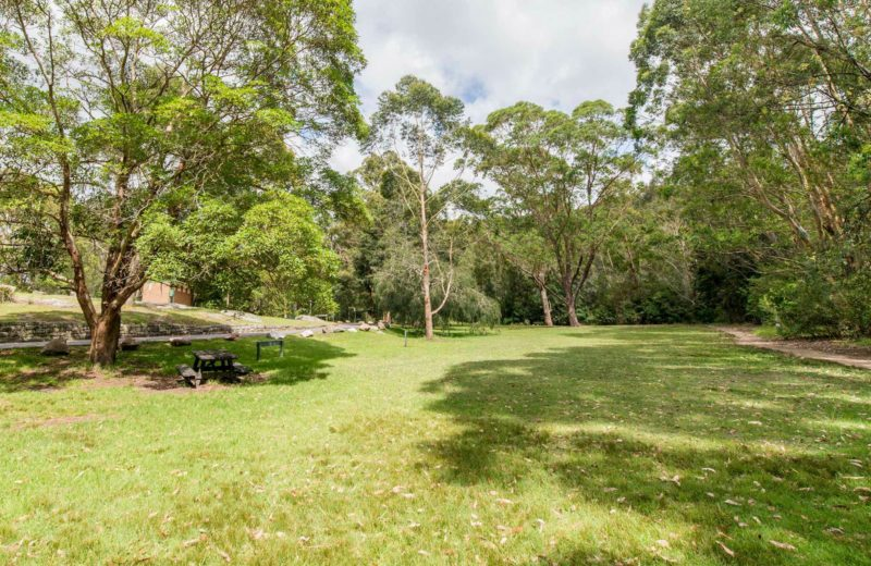 Illoura picnic area, Lane Cove National Park. Photo: John Spencer