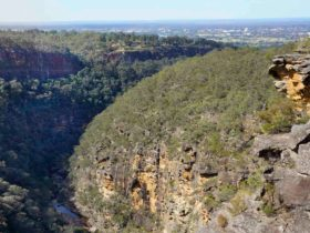 Jack Evans Track, Glenbrook Gorge, Blue Mountains National Park. Photo: Steve Alton/NSW Government