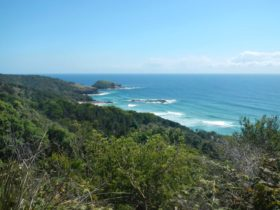 Jack Perkins track, Hat Head National Park. Photo: Debby McGerty/NSW Government