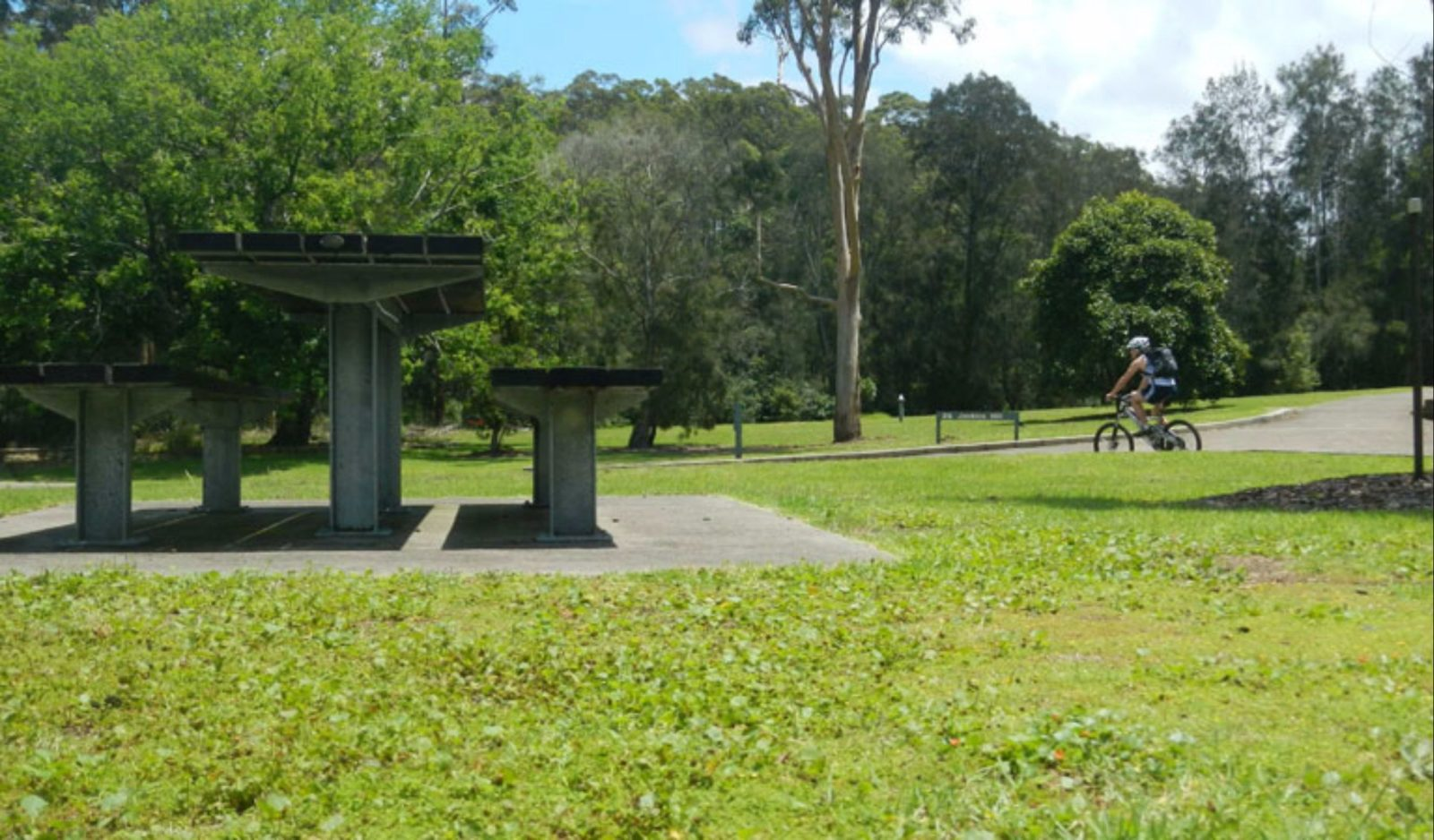 Jenkins Hill picnic area