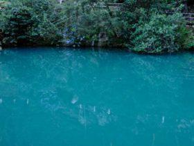 Jenolan Karst Conservation Reserve