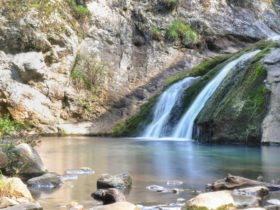 Jenolan River walking track, Jenolan Karst Conservation Reserve. Photo: Jenolan Caves Trust