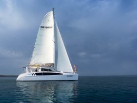 Latest model world class sailing catamaran