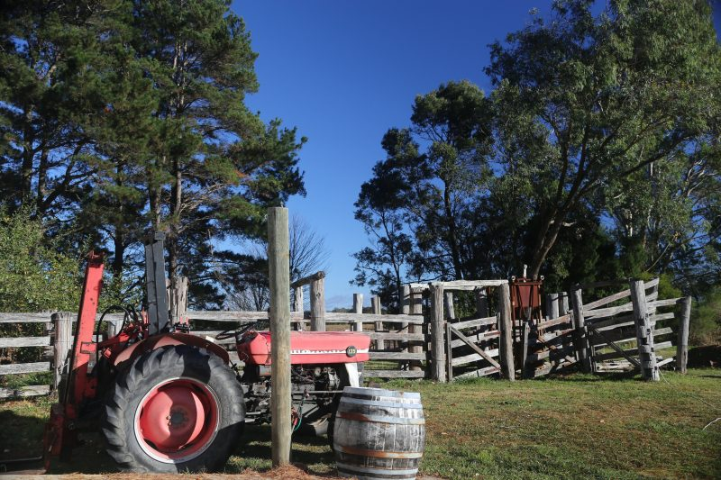 tractor, farm, Joadja, winery, vineyard