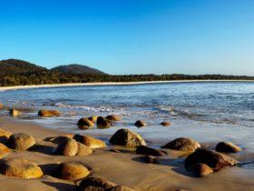 Trial Bay, South West Rocks