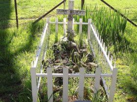 Johnny Gilbert's grave
