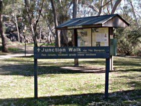 Junction walk, Kwiambal National Park. Photo: NSW Government