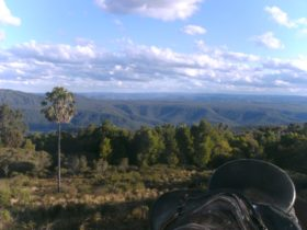 Kangaroo Valley Horseriding