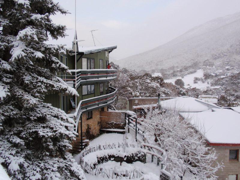 Kasees in winter