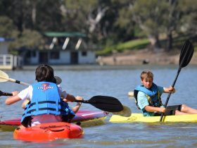 Deniliquin Kayak Hire