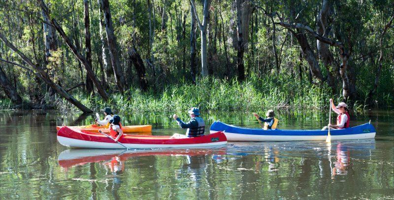 Deniliquin Kayak Hire