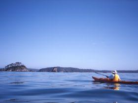 Kayaking towards Snapper Island