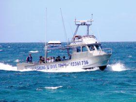 Fishing charters aboard Kostalota from Kiama