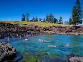 Rock pool below Kiama Harbour Cabins