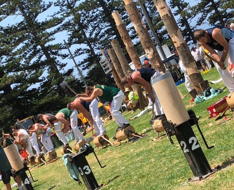Woodchop competition at Kiama Show