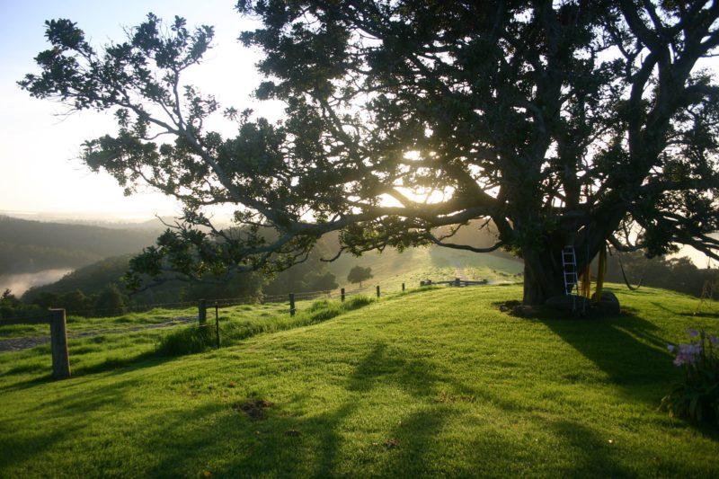 Kilfeacle Farm Cottage