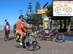 bike hire sydney