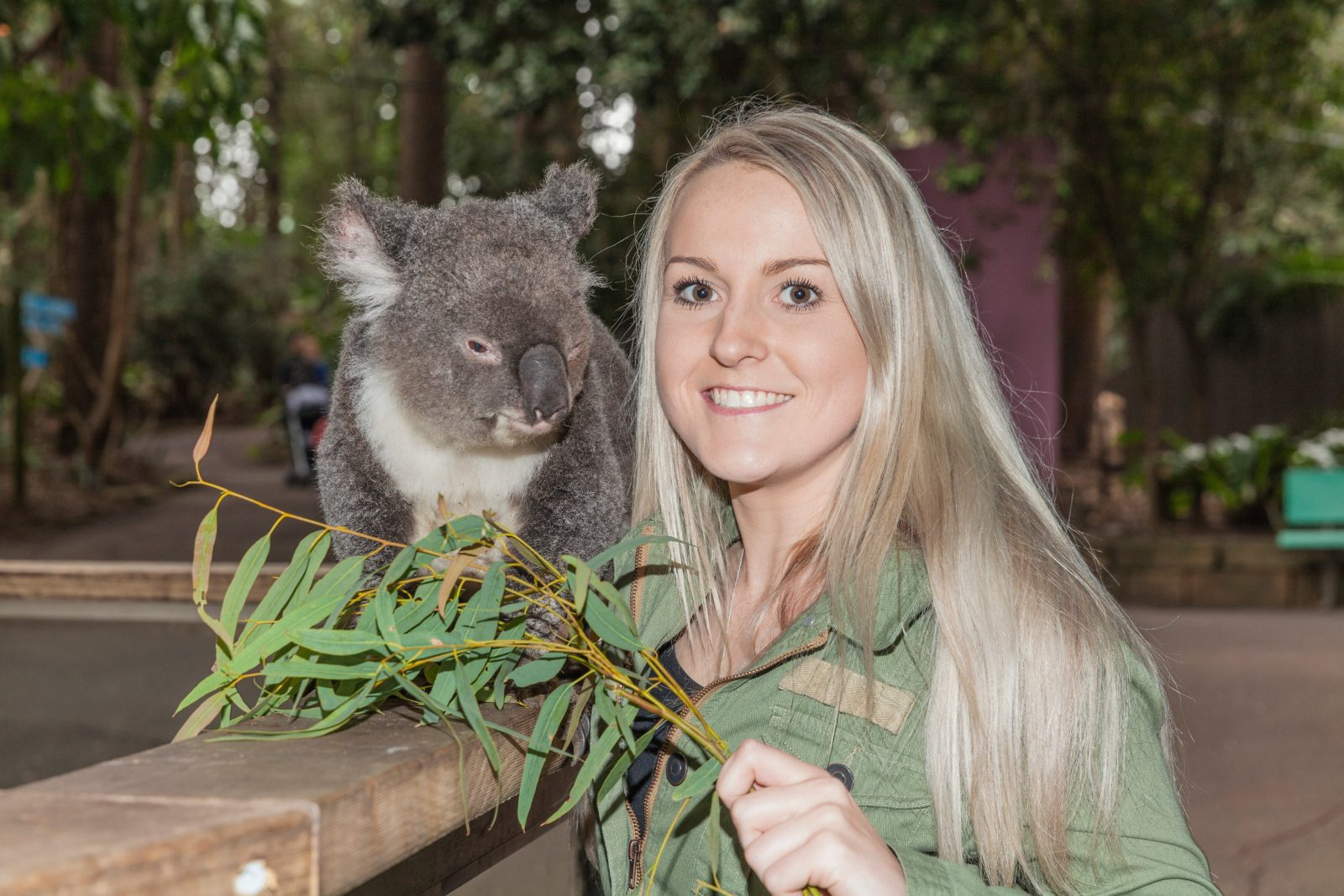 Yes you can pat our koalas ther is four Koala presentations daily