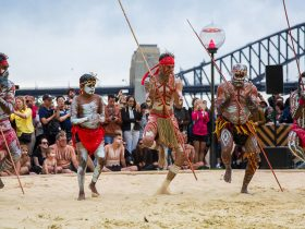 Koomurri Aboriginal Dancers
