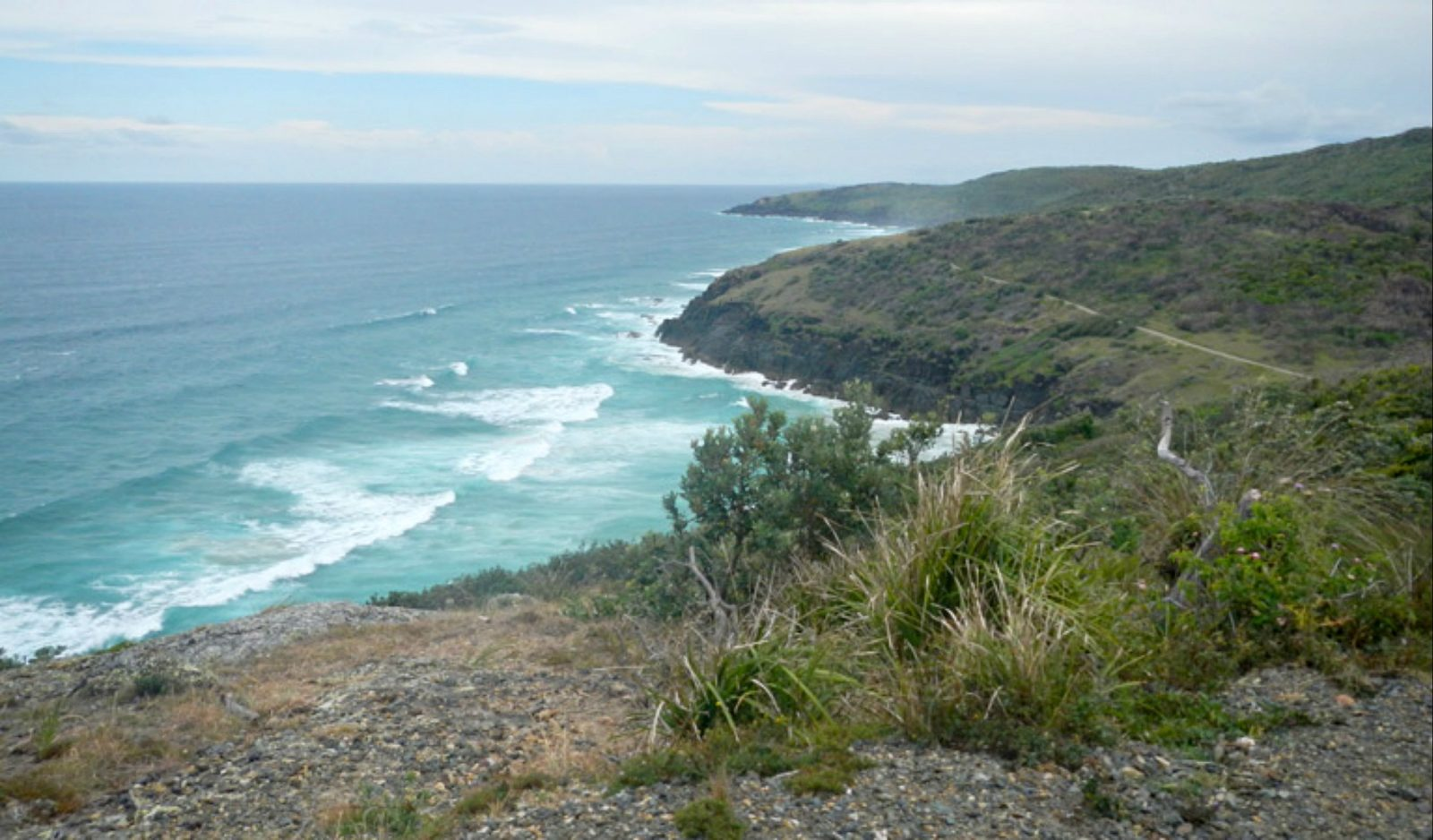 Korogoro Walking track, Hat Head National Park. Photo: Debby McGerty/NSW Government