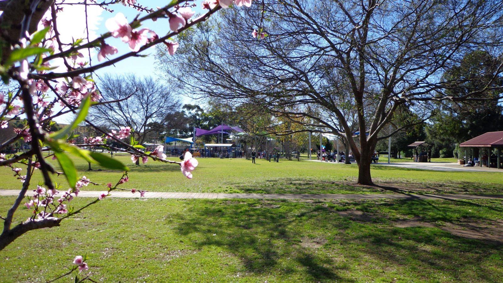 Koshigaya Park Campbelltown NSW