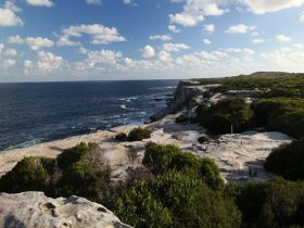 Cape Solander, Kamay Botany Bay National Park. Photo: Andy Richards
