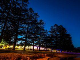 Lagoon restaurant exterior at night