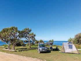 A tent pitched next to a car with the beach in the background at Red Cliff campground in Yuraygir Na