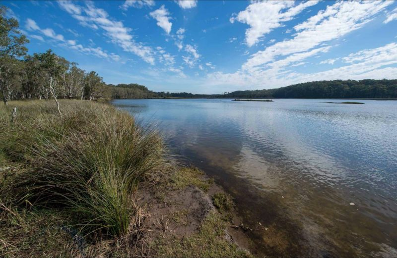Lake Innes Nature Reserve