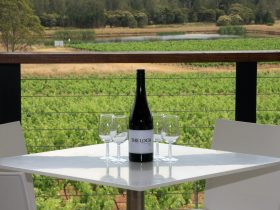 Enjoy a glass of the Loch Shiraz overlooking the vineyards