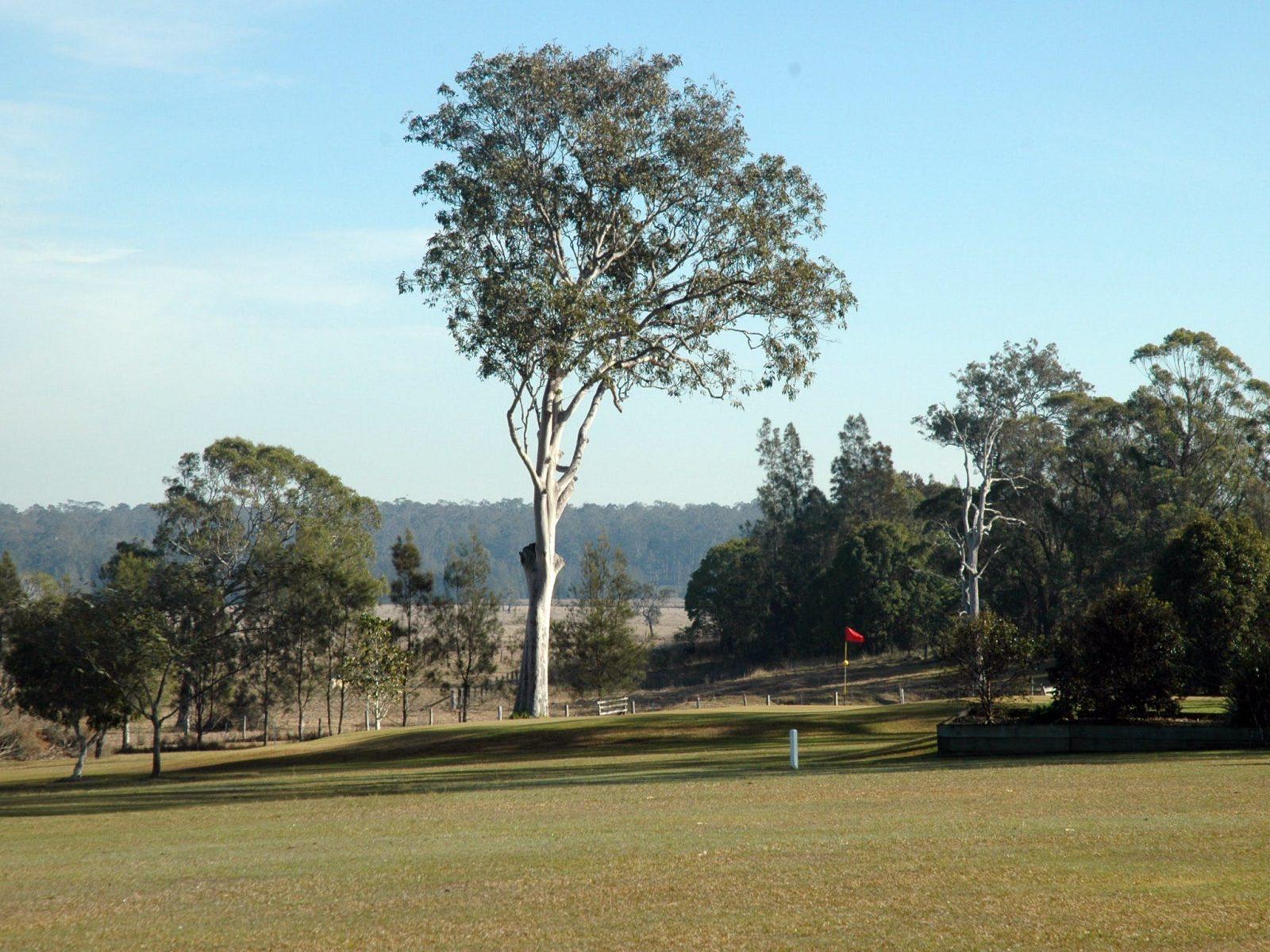 /Golf Course