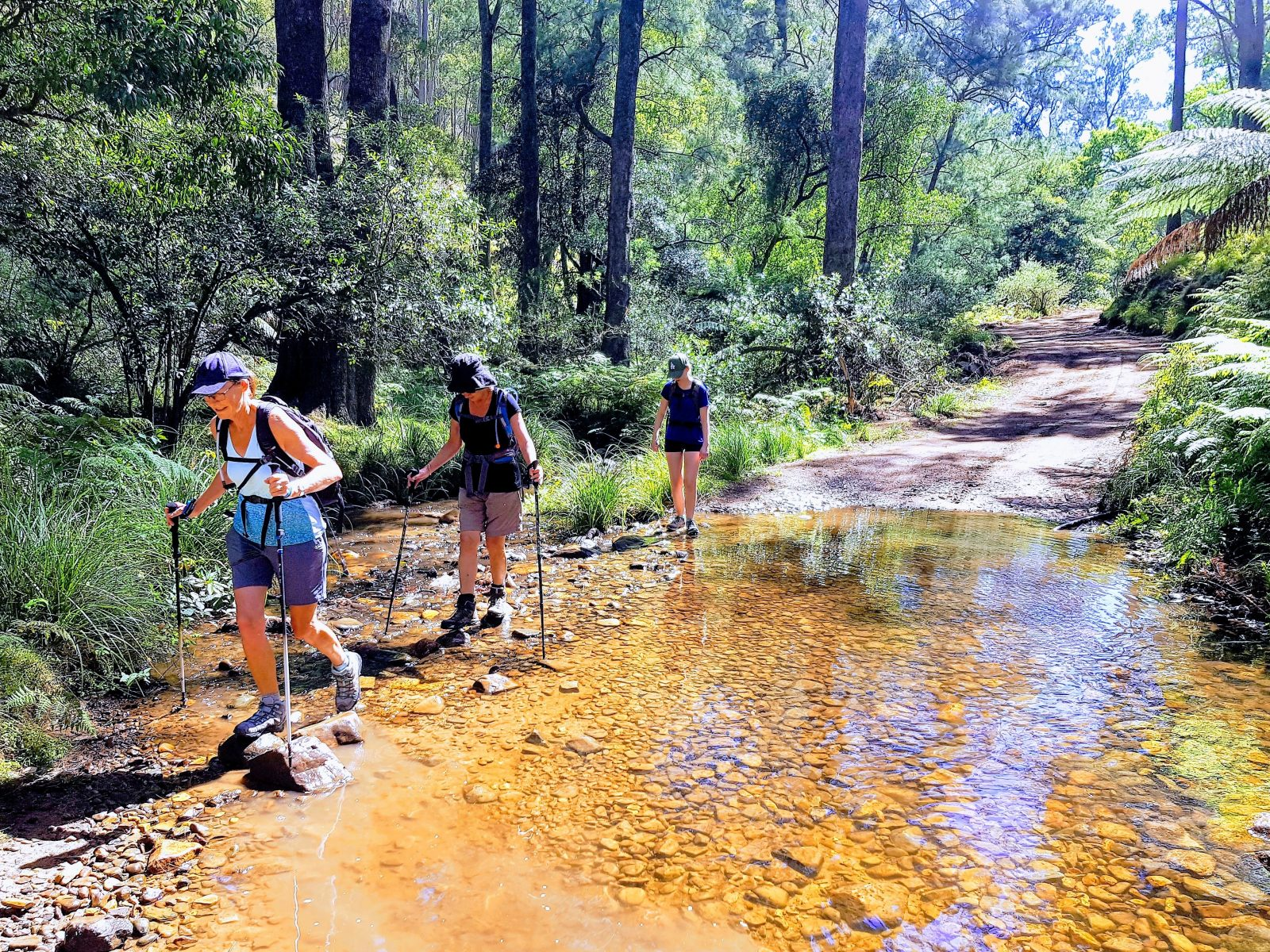 Braving the rapids on the Pack-Free Six Foot Track Walk by Life's an Aventure