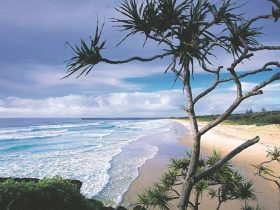 Lighthouse Beach Ballina