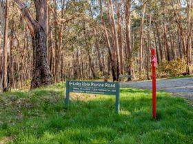 Lobs Hole Ravine 4WD Trail