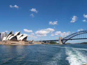 Experience Sydney through Local Eyes