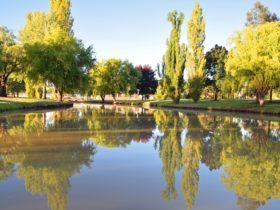 Brookong Lagoon, Lockhart Caravan Park