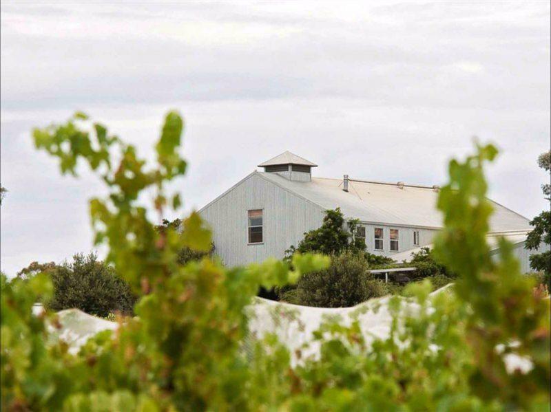 Lowe Wines Cellar Door