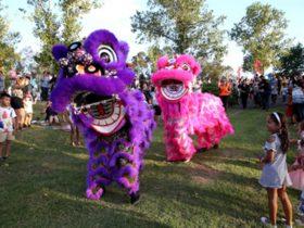 Lunar New Year in Blacktown