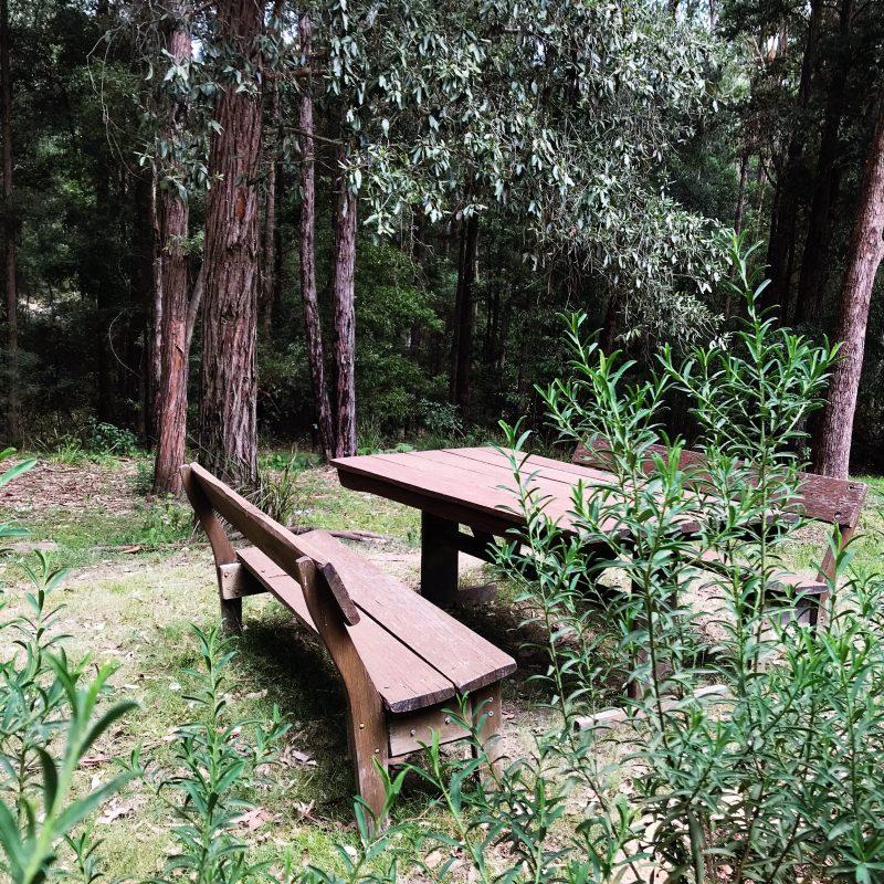 Quiet spot to sit.