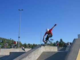 Macquarie Fields Skate park