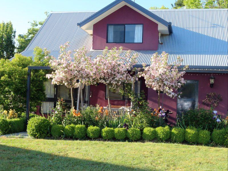 Magenta Cottage Garden
