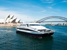 Magistic Sydney Lunch Cruises