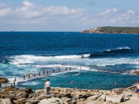 Swimmers enjoying Mahon Pool, Maroubra